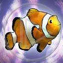 ryba ryby bajka rybki rybka nemo