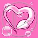 serce plemnik plemniki serduszko serca