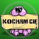 zwierzęta pies miłość walentynki psy pieski kocham cię zwierzę