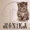 zwierzęta kot kotek Monika koty imiona kotki zwierzę