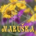kwiaty Mariola imiona kwiatki kwiatuszki