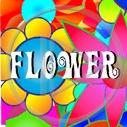 kwiaty kwiatek kwiatuszek flower kwiatki kwiatuszki
