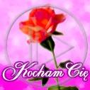 kwiat miłość kwiaty kwiatek kwiatuszek kwiatki kocham cię kwiatuszki