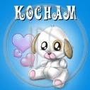 zwierzęta pies serce miłość kocham serduszka piesek walentynki psy pieski serca zwierze