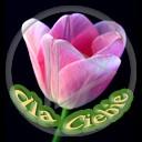 kwiat miłość urodziny kwiatek kocham tulipan ciebie imieniny dla życzenia urodzinowe dla mamy życzę dla taty z okazji... imieninowe