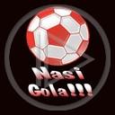 Polska sport gol nasi gola euro 2008
