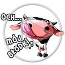 zwierzęta krowa krowy krówka napis śmieszne tekst bydło zwierze och mój słodki