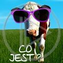 zwierzęta krowa okulary krowy śmieszne bydło co jest zwierze
