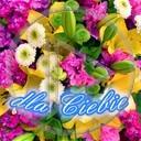 urodziny kwiaty święto bukiet 8 marca wyślij imieniny dzień matki obrazek dzień kobiet urodzinowe dla ciebie mms dla mamy z okazji... imieninowe pobierz