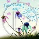 kwiaty buzia słoneczko napis słonko tekst kwiatki uśmiechnij się
