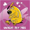 zwierzęta pies uwaga humor piesek psy zły ostrzeżenie zwierzę animalz