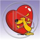 zwierzęta pies serce miłość kocham piesek psy pieski serduszko serca