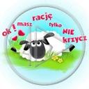 owca baran owieczka napis owce tekst owieczki ok! masz rację tylko nie krzycz
