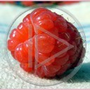Malina owoce Malinka owoc natura maliny malinki malinowy