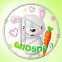 królik zwierzęta serce marchewka wiosna marchew serca króliki marchewki wiosenne