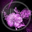 kwiat kwiaty kwiatek roślina rośliny kwiatki