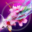 kwiat kwiaty kwiatek roślina bukiet rośliny kwiatki bukiety