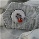 zwierzęta guzik biedronka guziki kropki biedronki