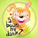zwierzęta marchewka zając napis tekst marchew zające zwierze a buzi mi dasz?