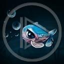 zwierzęta ryba ryby rybki rybka zwierze