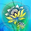 kwiat kwiaty kwiatek wzorek wzór wzorki wzory kwiatki