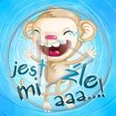 zwierzęta małpa małpka napis tekst małpy małpki zwierze jest mi źle