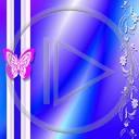 motyl wzór motylek różne motyle owad wzory motylki