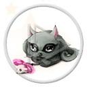 zwierzęta kot kotek koty myszka myszki kotki kociak zwierze kociaki