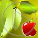 jabłko symbol owoc symbole znaczenie