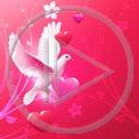 serce miłość ptaki ptak gołąb miłosne gołębie serca gołębica
