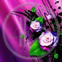 kwiat kwiaty róża roślina wzór bukiet rośliny wzory róże