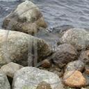 kamienie szwecja przyroda natura plener