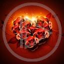 serce kwiat miłość kwiaty róża serduszka miłosne serduszko serca róże