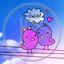 zwierzęta serce miłość ptaki para zakochani miłosne serca wróble wróbelki ćwir