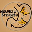 miłość motyl motyle brzuch kochać zakochanie brzuszek motylki w brzuszku
