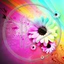 kwiat kwiaty kwiatek roślina wzór rośliny wzory kwiatki