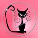 zwierzęta kot kotek koty kocica kotki zwierze