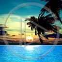 krajobraz palma woda widok przyroda natura zachód słońca palmy widoki plener pejzaż