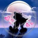 serce miłość kot księżyc serduszka para koty zakochani miłosne serduszko kotki serca