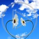 serce kwiaty chmury niebo kwiatki