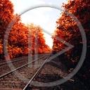 podróż widok kolej drzewa widoki tory kolejowe szyny