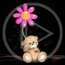 kwiat miś kwiaty misiek misie misio misiaczek miśki misiaczki pluszak