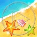 zwierzęta morze plaża małża rozgwiazda