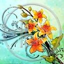 kwiat kwiaty bukiet rośliny kwiatki wiązanka