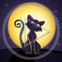 zwierzęta kot noc księżyc koty kociak zwierze