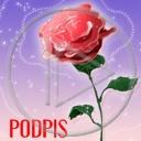 kwiat kwiaty kwiatek kwiatki dla ciebie
