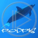 ryby delfin rybka delfiny delfinek delfinki