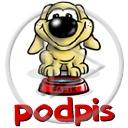 zwierzęta pies piesek psy pieski zwierzę fafik