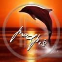 ryba ryby delfin delfiny delfinki